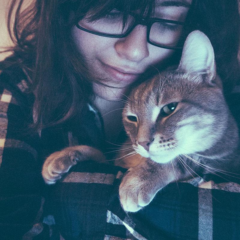 cuddling-cat-avery-elise-and-thomas-blog