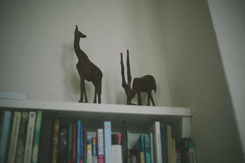 bookshelf-wooden-animals-home-decor
