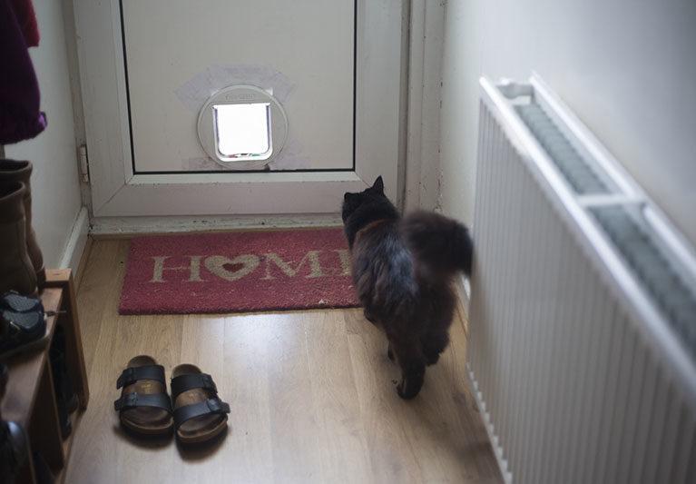 black-cat-home-welcome-mat-cute