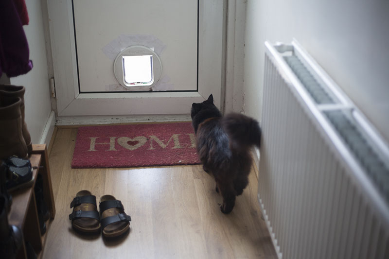 black-cat-home-welcome-mat-cute