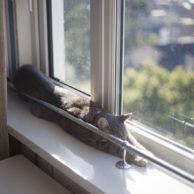 Stretchin' & Sleepin'