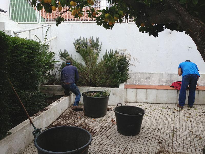 before-messy-garden