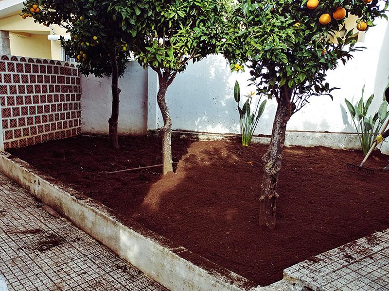 cleaned-back-garden-ready-for-gravel