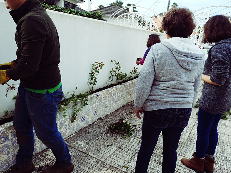 planning-out-front-garden-arrangement