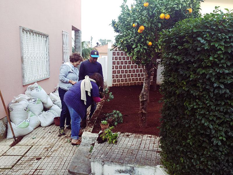 neighbours-planning-back-garden-arrangement